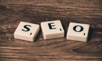 SEO Shark: From Humble Beginnings to a Digital Success